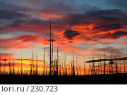 Купить «Огненный закат», фото № 230723, снято 12 августа 2005 г. (c) Егорова Елена / Фотобанк Лори