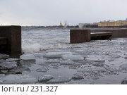 Купить «Санкт-Петербург, наводнение», фото № 231327, снято 3 февраля 2008 г. (c) Андрюхина Анастасия / Фотобанк Лори