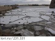Купить «Санкт-Петербург, наводнение», фото № 231331, снято 3 февраля 2008 г. (c) Андрюхина Анастасия / Фотобанк Лори