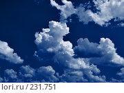 Купить «Свет луны», фото № 231751, снято 27 февраля 2020 г. (c) Роман Сигаев / Фотобанк Лори