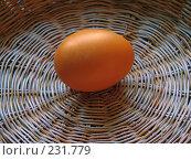 Купить «Золотое куриное яйцо в корзинке», фото № 231779, снято 25 января 2007 г. (c) only / Фотобанк Лори