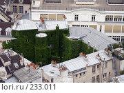 Купить «Озеленение», фото № 233011, снято 7 мая 2007 г. (c) Юлия Кузнецова / Фотобанк Лори
