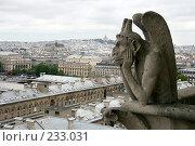 Купить «Вид с собора Парижской богоматери», фото № 233031, снято 7 мая 2007 г. (c) Юлия Кузнецова / Фотобанк Лори