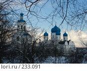 Купить «Боголюбовский женский монастырь», фото № 233091, снято 21 марта 2008 г. (c) Яков Филимонов / Фотобанк Лори