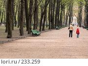 Купить «Летний сад. Весна. Санкт-Петербург», эксклюзивное фото № 233259, снято 20 мая 2006 г. (c) Александр Алексеев / Фотобанк Лори