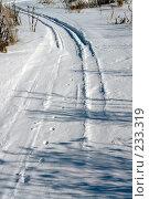 Купить «Зимняя дорога», фото № 233319, снято 21 февраля 2008 г. (c) Синицын Андрей / Фотобанк Лори