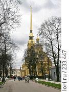 Купить «Санкт-Петербург.  Петропавловский собор.», фото № 233447, снято 10 мая 2005 г. (c) Александр Секретарев / Фотобанк Лори