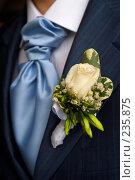 Купить «Бутоньерка на костюме жениха», фото № 235875, снято 1 марта 2008 г. (c) Григорий Сухарев / Фотобанк Лори