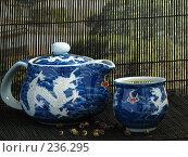 Купить «Восточное чаепитие», фото № 236295, снято 5 мая 2007 г. (c) Ольга Хорькова / Фотобанк Лори