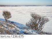 Купить «Зимний пейзаж», фото № 236675, снято 7 января 2008 г. (c) Дмитрий Яковлев / Фотобанк Лори