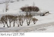 Купить «Занесенный снегом пруд», фото № 237791, снято 26 марта 2008 г. (c) Ольга Хорькова / Фотобанк Лори