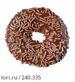 Купить «Шоколадный пончик», фото № 240335, снято 1 апреля 2008 г. (c) Tamara Kulikova / Фотобанк Лори