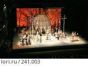 Купить «Опера  «Царская невеста»  в  Мариинском театре в Санкт-Петербурге», фото № 241003, снято 20 апреля 2019 г. (c) Александр Секретарев / Фотобанк Лори