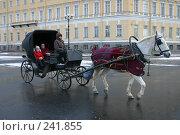 Купить «Санкт-Петербург. Карета на Дворцовой площади», фото № 241855, снято 25 сентября 2018 г. (c) Александр Секретарев / Фотобанк Лори