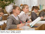 Купить «Фоторепортаж с уроков в четвертом классе начальной школы», фото № 242223, снято 3 апреля 2008 г. (c) Федор Королевский / Фотобанк Лори