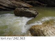 Купить «Республика Адыгея. Гуамское ущелье», фото № 242363, снято 1 мая 2006 г. (c) Виктор Филиппович Погонцев / Фотобанк Лори