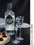 Купить «Натюрморт с бутылкой водки Русский Резерв», фото № 243499, снято 1 марта 2008 г. (c) Harry / Фотобанк Лори