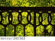 Купить «Детали чугунной ограды у камской набережной, Пермь», фото № 243563, снято 2 июня 2007 г. (c) Harry / Фотобанк Лори