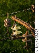 Купить «Хитросплетение изоляторов, проводов и растяжек на фоне зеленой растительности», фото № 243567, снято 2 июня 2007 г. (c) Harry / Фотобанк Лори