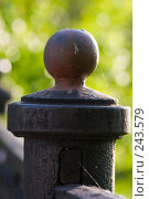 Купить «Старый чугунный литой шар на ограде», фото № 243579, снято 2 июня 2007 г. (c) Harry / Фотобанк Лори