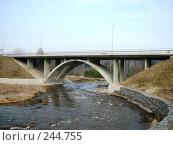 Купить «Латвия,пейзажи,мост над рекой Амата», фото № 244755, снято 4 апреля 2008 г. (c) maruta bekina / Фотобанк Лори