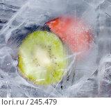 Купить «Киви и слива во льду, замороженные фрукты», фото № 245479, снято 7 декабря 2007 г. (c) Виноградов Илья Владимирович / Фотобанк Лори