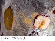 Купить «Замороженное яблоко, яблоко во льду», фото № 245563, снято 7 декабря 2007 г. (c) Виноградов Илья Владимирович / Фотобанк Лори