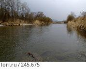 Купить «Вешние воды, Уссури», фото № 245675, снято 6 апреля 2008 г. (c) Олег Рубик / Фотобанк Лори