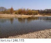Купить «Весенняя Уссури», фото № 246115, снято 8 апреля 2008 г. (c) Олег Рубик / Фотобанк Лори