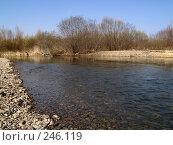 Купить «Весенняя Уссури», фото № 246119, снято 8 апреля 2008 г. (c) Олег Рубик / Фотобанк Лори
