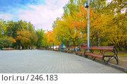 Купить «Скамейки в городском парке осенью», фото № 246183, снято 22 сентября 2007 г. (c) Валерия Потапова / Фотобанк Лори
