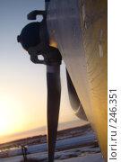 Купить «Винт», фото № 246351, снято 3 января 2007 г. (c) Дмитрий Зуев / Фотобанк Лори