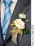 Купить «Деталь костюма жениха», фото № 246879, снято 8 сентября 2007 г. (c) Минаев Сергей / Фотобанк Лори