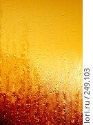 Купить «Солнечные капли», фото № 249103, снято 17 августа 2018 г. (c) ElenArt / Фотобанк Лори