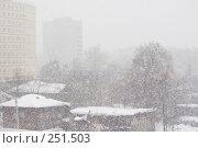 Купить «Сильный снегопад хлопьями в уральском городе», фото № 251503, снято 2 марта 2008 г. (c) Harry / Фотобанк Лори