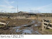 Купить «Упадок сельского хозяйства», фото № 252271, снято 12 апреля 2008 г. (c) Малышева Мария / Фотобанк Лори