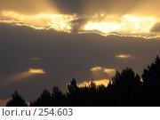 Купить «Зарисовка на тему утра...(Небо Израиля).», фото № 254603, снято 17 апреля 2008 г. (c) Борис Ганцелевич / Фотобанк Лори