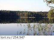 Купить «Спокойствие», фото № 254947, снято 6 сентября 2007 г. (c) Цветков Виталий / Фотобанк Лори