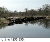 Купить «Один из мостов на реке Уборть», фото № 255855, снято 9 апреля 2008 г. (c) Мещенко Олег / Фотобанк Лори