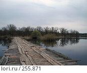 Купить «Один из мостов на реке Уборть», фото № 255871, снято 9 апреля 2008 г. (c) Мещенко Олег / Фотобанк Лори