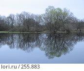 Купить «Зеркало воды  (Долина реки Уборть)», фото № 255883, снято 9 апреля 2008 г. (c) Мещенко Олег / Фотобанк Лори