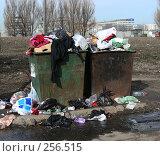 """Купить «Переполненные мусорные контейнеры на дороге. Микрорайон """"1 Мая"""". Балашихинский район. Московская область», эксклюзивное фото № 256515, снято 31 марта 2008 г. (c) lana1501 / Фотобанк Лори"""
