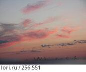 Туман. Стоковое фото, фотограф Алексей Семьёшкин / Фотобанк Лори