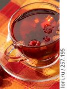 Купить «Фруктовый чай», фото № 257195, снято 18 сентября 2005 г. (c) Кравецкий Геннадий / Фотобанк Лори
