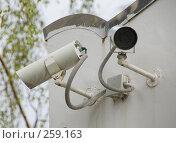 Купить «Недремлющее око», фото № 259163, снято 19 апреля 2008 г. (c) Эдуард Межерицкий / Фотобанк Лори