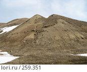 Купить «Две вороны пролетают над горой», фото № 259351, снято 30 марта 2008 г. (c) Равиль Шангараев / Фотобанк Лори
