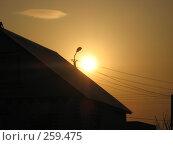 Купить «Закат солнца среди крыш», фото № 259475, снято 10 апреля 2008 г. (c) Равиль Шангараев / Фотобанк Лори