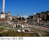 Купить «Римский Форум. Общий вид», фото № 261455, снято 20 мая 2007 г. (c) Маргарита Лир / Фотобанк Лори