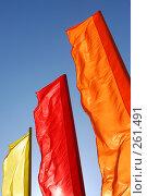 Купить «Цветные флаги», фото № 261491, снято 24 апреля 2008 г. (c) Брыков Дмитрий / Фотобанк Лори