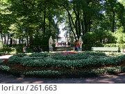 Купить «Санкт-Петербург. Летний сад,», фото № 261663, снято 27 июня 2005 г. (c) Александр Секретарев / Фотобанк Лори